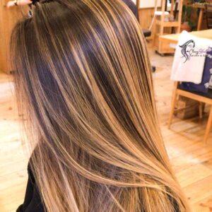 Hair Highlights Shades